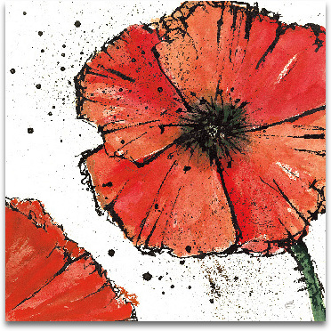 Not A California Poppy On White IV - 12x12 preview