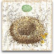 Botanical Nest II - ...<span>Botanical Nest II - 12x12</span>