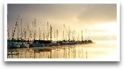 Marina Morning I