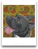 Dlynn's Dogs - Kendall