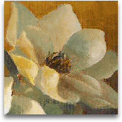 Magnolias Aglow At S...<span>Magnolias Aglow At Sunset II (detail)</span>