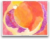 Cabbage Rose V