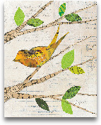 Birds In Spring II -...<span>Birds In Spring II - 8x10</span>