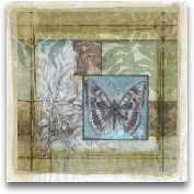 Stained Glass Butter...<span>Stained Glass Butterfly I</span>