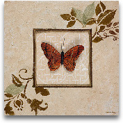 Butterfly Study I
