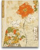 Collaged Botanicals ...<span>Collaged Botanicals I - 11x14</span>