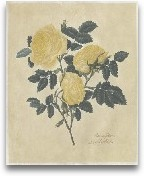 Embellished Double Y...<span>Embellished Double Yellow Rose</span>