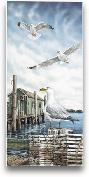 Seagull Key