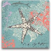 Starfish On Aqua - 12x12