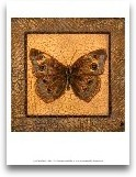 Crackled Butterfly -...<span>Crackled Butterfly - Buckeye</span>