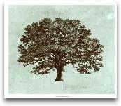 Spa Tree I