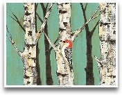 Birch Grove On Teal II