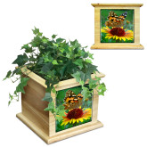 Maple Planter Box