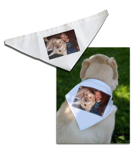 Dog Bandana - Small