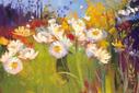 Contemporary Meadow