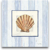 Sanibel Shell I