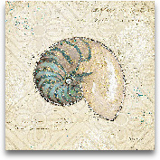 Beach Treasures III ...<span>Beach Treasures III - 12x12</span>