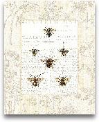 Bee Botanical - 16x20