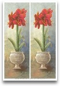 2-Up Amaryllis Vertical