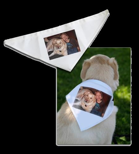 Dog Bandana - Small